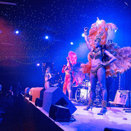 Tropicalia Show in Tour with Pele'