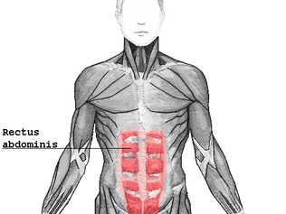 Core Training 101: Part 1 of 3: