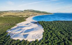 Playa de Bolonia - Tarifa.jpg