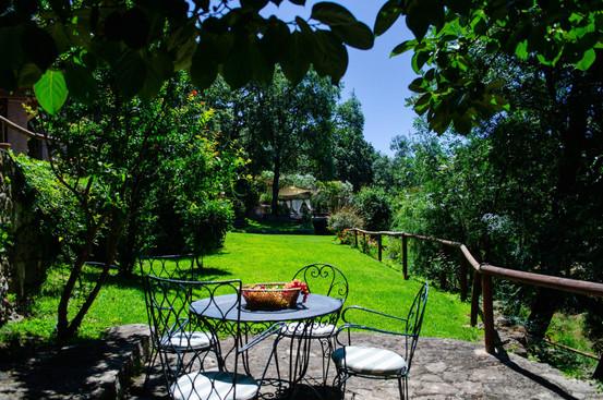 Round Table Garden (2)-44.jpg