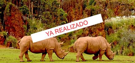 Cabarceno Cantabria rinocerontes.png