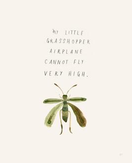 My Little Grasshopper