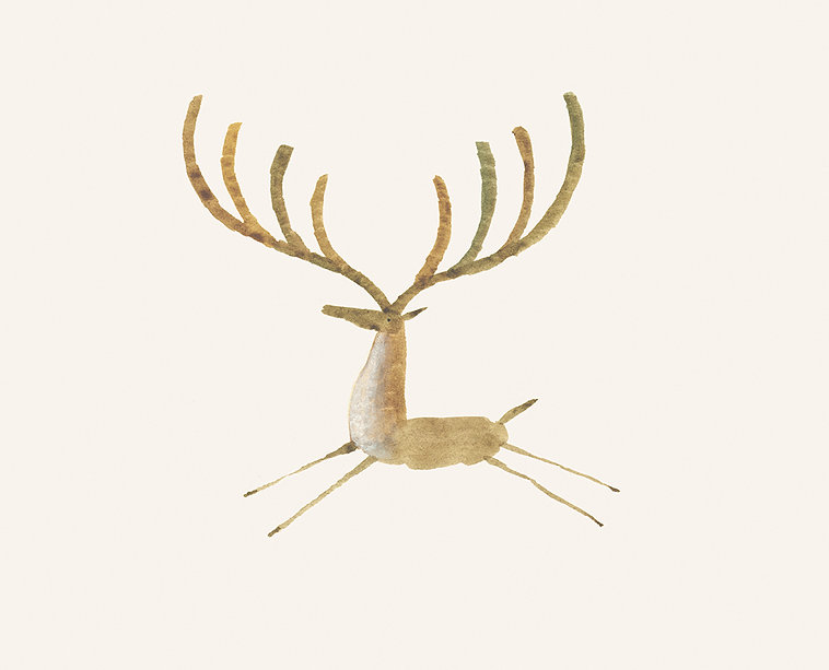 Deer II_Capa.jpg