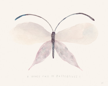 A House Full of Butterflies I