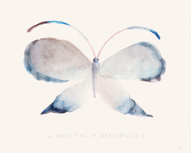 A House Full of Butterflies II