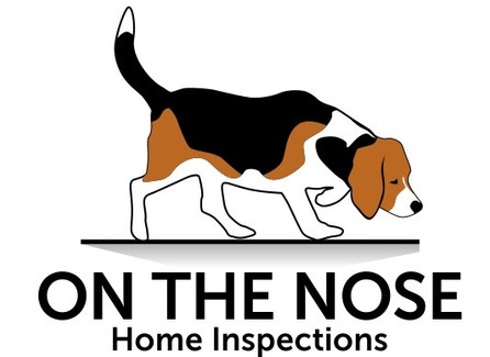Residential Home Inspection From On The Nose Home Inspections