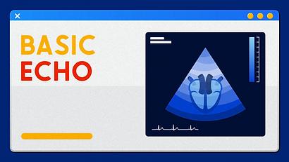 Basic Echo