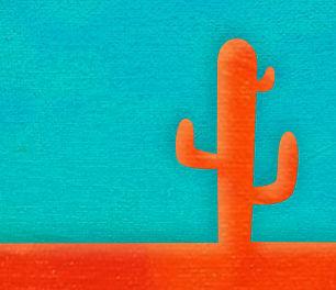 Cacti Web image.jpg
