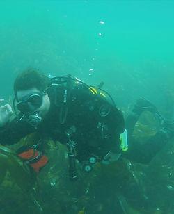 HMS Montagu_Diver.jpg
