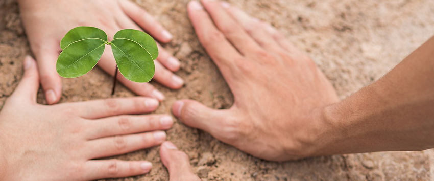 hands old young_planting header.jpg