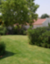 Gardens 22-06-07 001.jpg