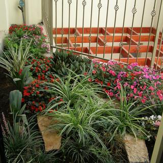 Gardens 22-06-07 037.jpg