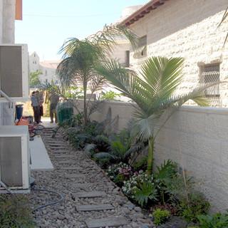 Saul's gardens 008.jpg