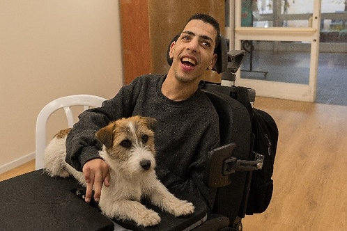 Dog therapy for  one month