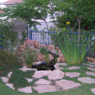 Gardens 22-06-07 030.jpg