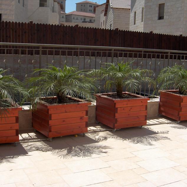 Saul's gardens 014.jpg