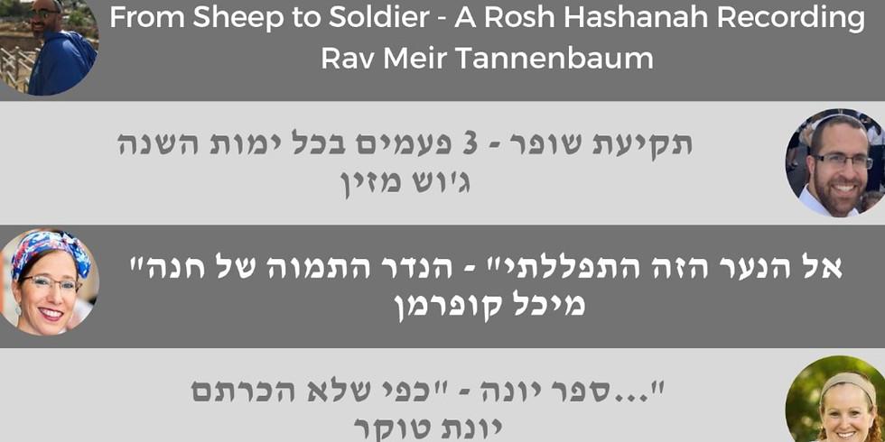 Pre-Rosh Hashana Learning & Kiddush