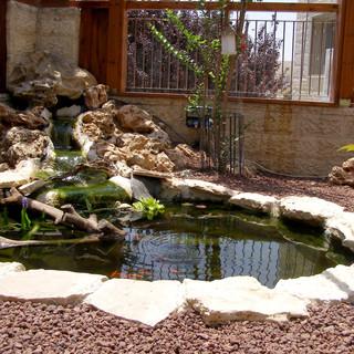 Gardens 22-06-07 044.jpg