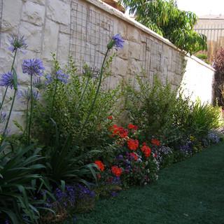 Gardens 22-06-07 023.jpg