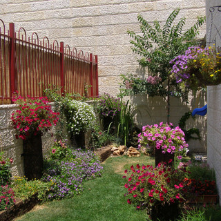 Gardens 22-06-07 039.jpg