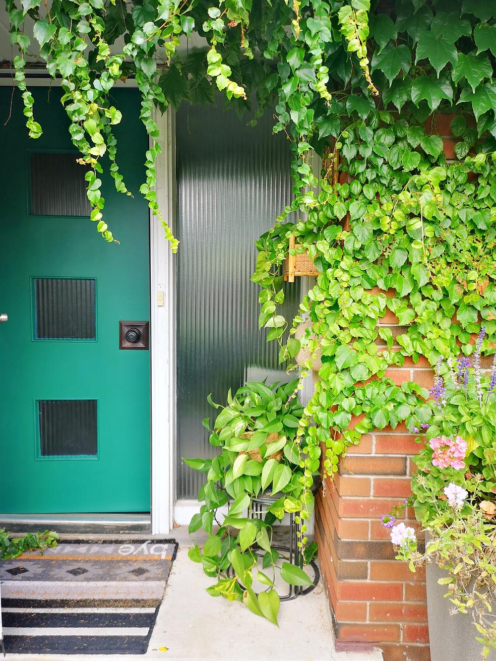 midcentury front door green door ivy on house