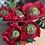 Thumbnail: Mini Panetone