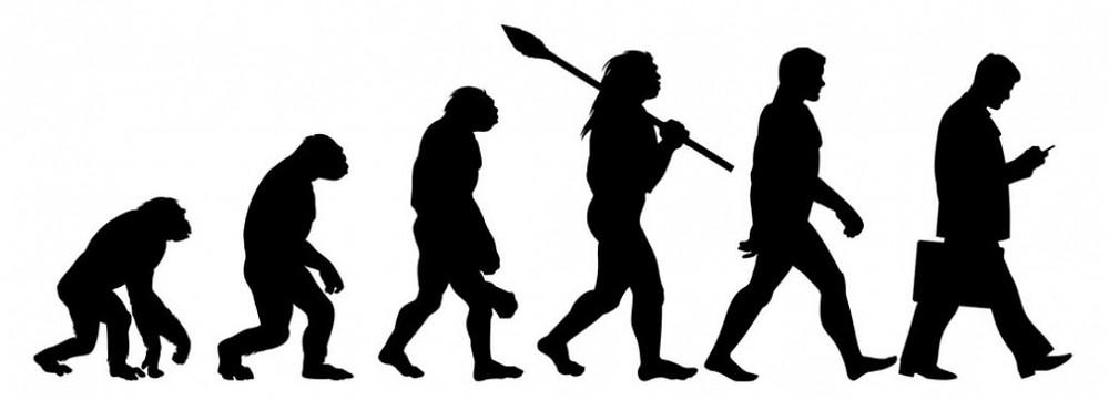 Evolution of upright posture