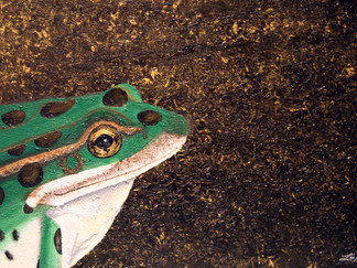Stay Gold Froggy Boy - 24in x 20in