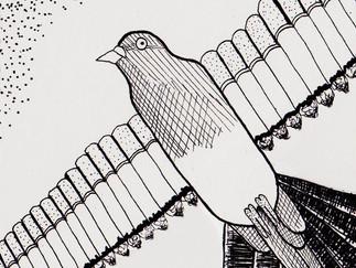 editorial illustration final.jpg