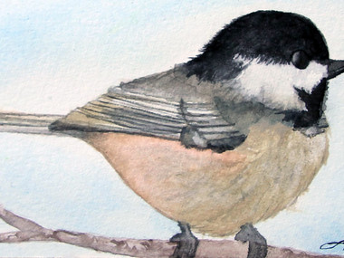 Chickadee- 6in x 4in