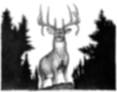 Droptine Deer w Trees.jpg
