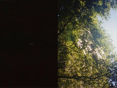 photos; melb/nz
