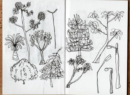 draw; 2015 sketchbook 02