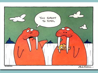 Happy Tuesday! Remember to Floss!