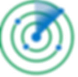Privacy4Logo - Icon.jpg