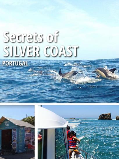46 - Excursions en bateau pour voir les dauphins à Nazaré