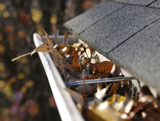When Should I Clean My Gutters?