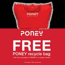 Poney | Lot 20