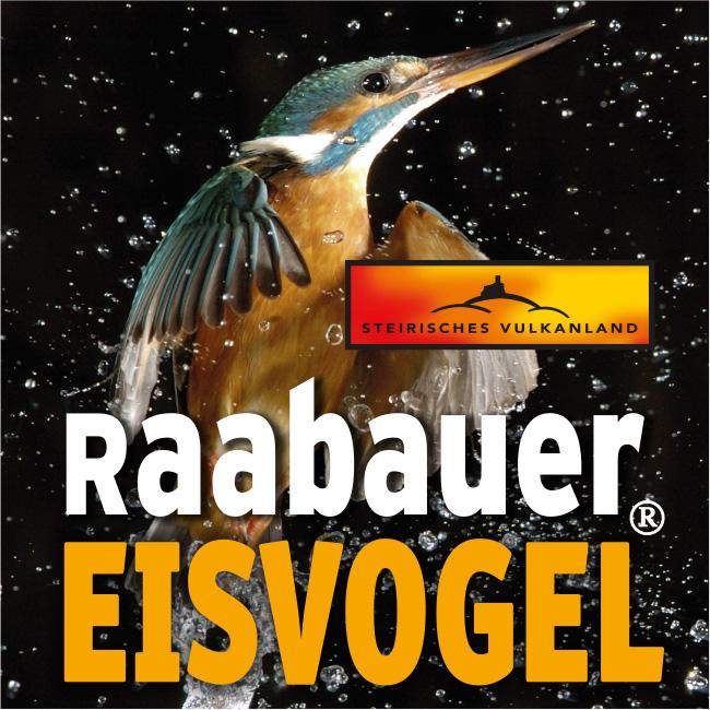 Eisvogel-Logo-quadratisch