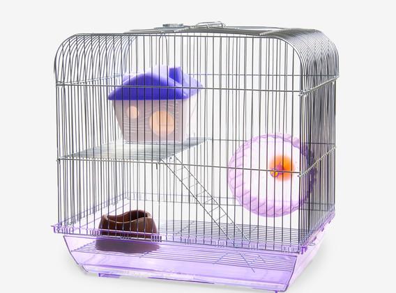 Small Animal Habitat