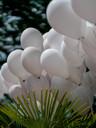 Deko_Luftballons_Hochzeit_Niederzier_Jül
