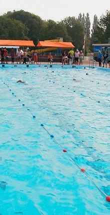 zwemclub de eendracht, zvdeeendracht