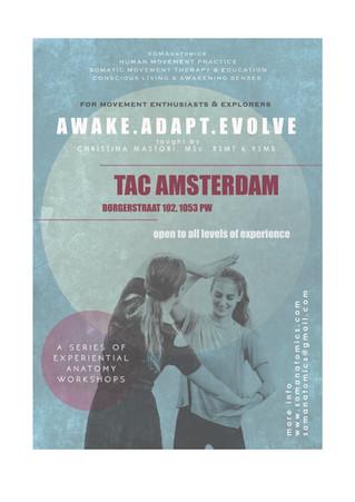 Awake Adapt Evolve jULY'17 workshops