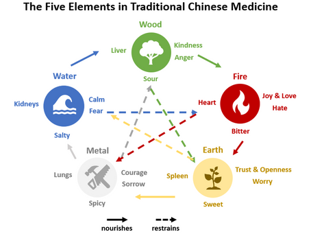 TCM: The Five Elements Profiles