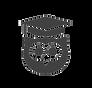 wisdom owl logo transparent 2.png