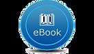 Erik Santana ebook.png
