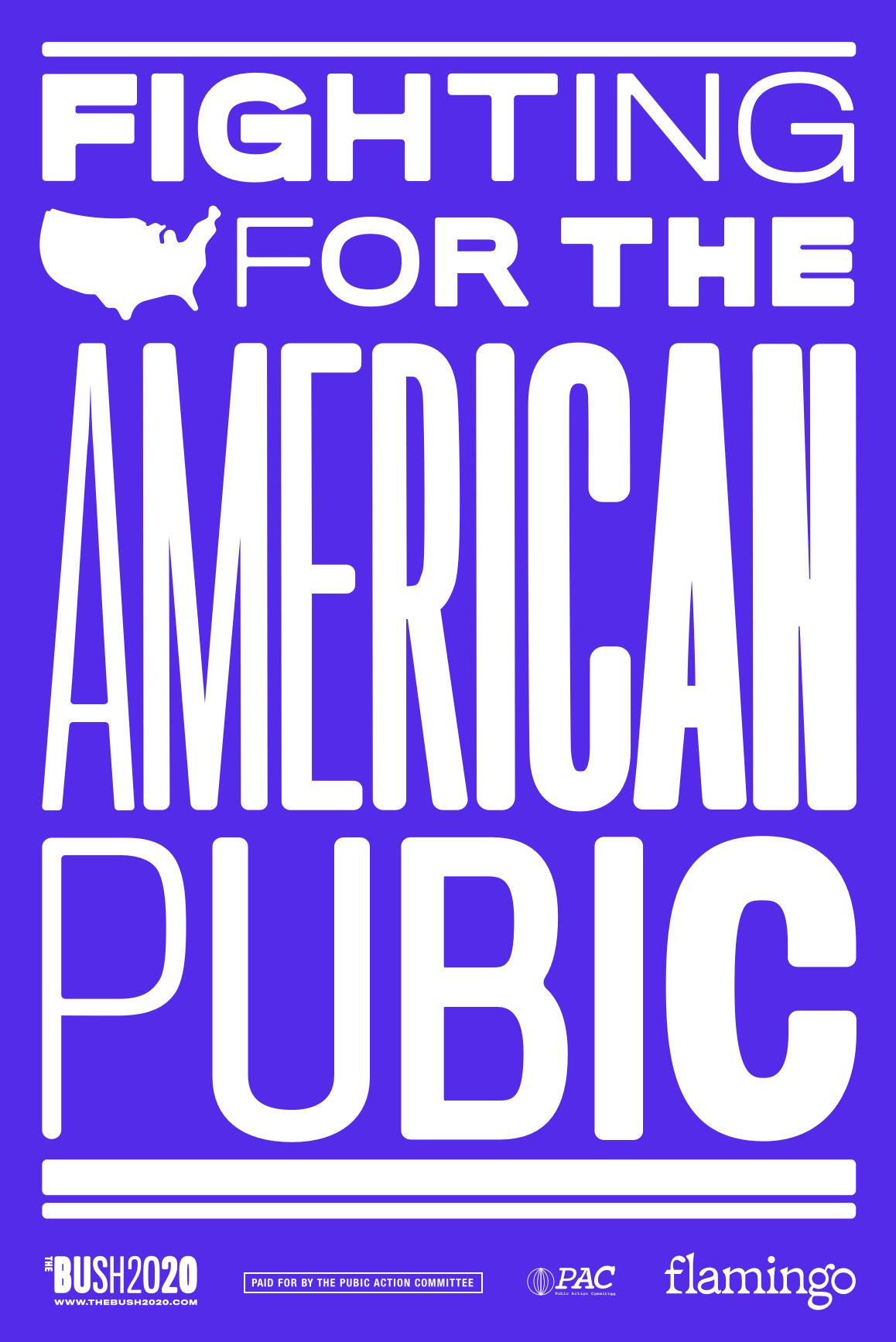 Fighting for the American Pubic Poster B