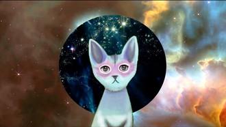 kittyAi_galaxy_1000.jpg