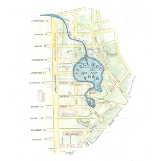 collect pond canal map.jpg