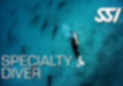 speciality diver.jpg
